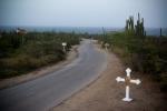 Scenic road to Alto Vista Chapel Aruba
