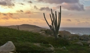 Say no to wind turbines at Urirama and Alto Vista Aruba